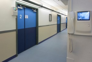 Altro and Southmead 2