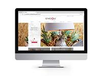 endon-webshot